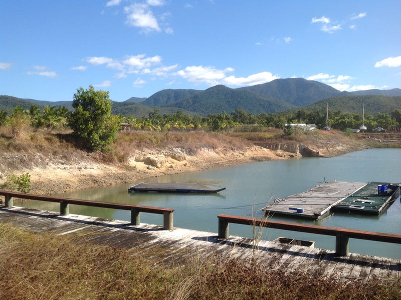 Lot 24, Tradewinds Drive, Cardwell, Qld 4849
