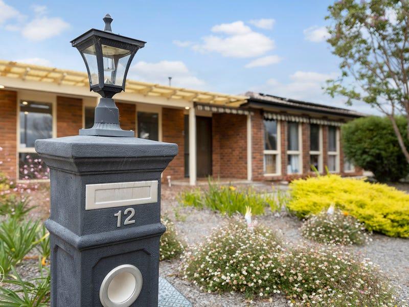 12 Wentcher Place, Richardson, ACT 2905