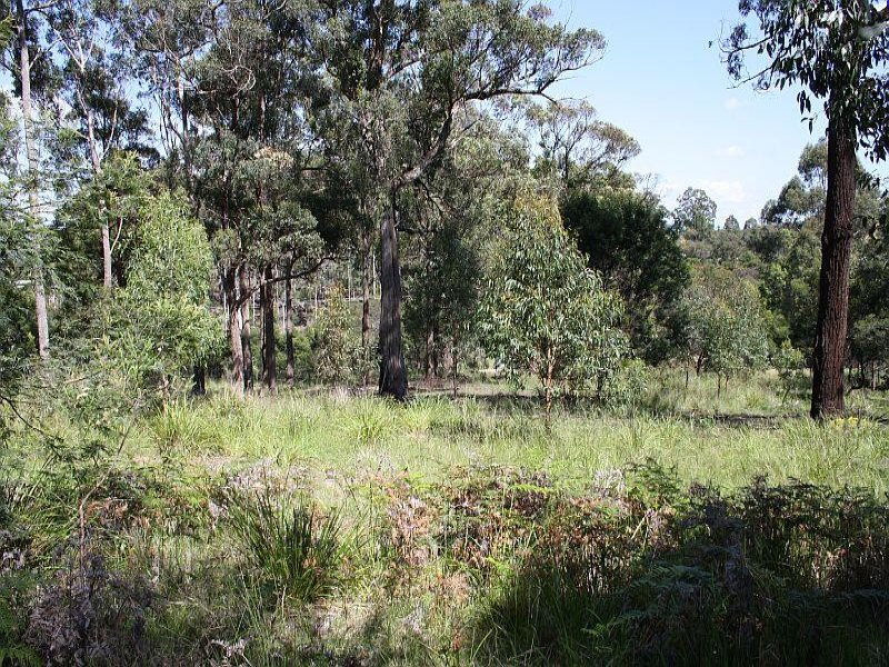 Lot 36 Bournda Park Way, Wallagoot, NSW 2550