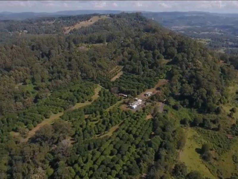 1005 Tuntable Creek Road, Nimbin, NSW 2480
