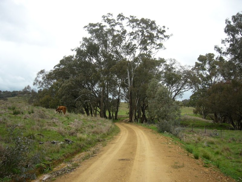 1019 Corringle Lane, Taylors Flat, NSW 2586