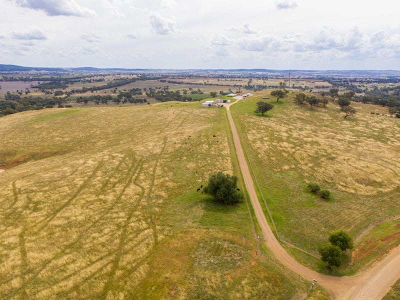 1581 Geegullalong Road, Murringo, NSW 2586