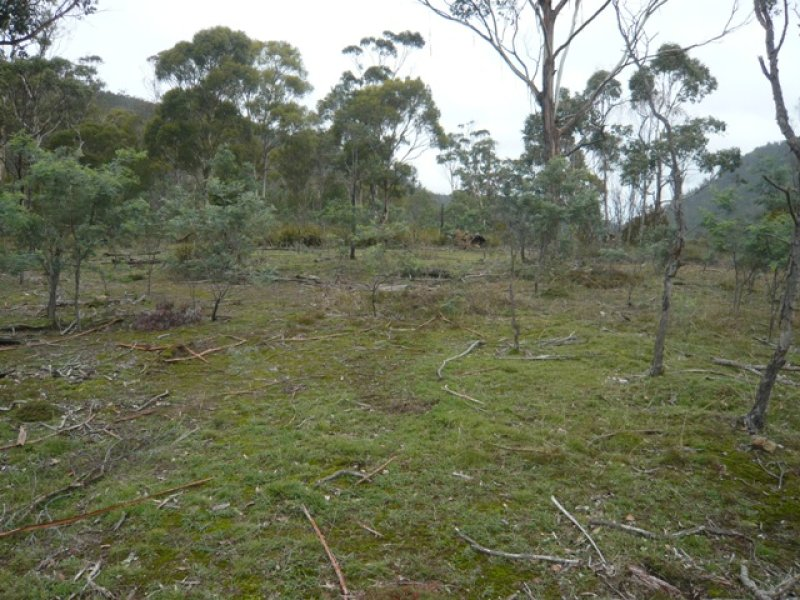 Lot 3, Plenty Valley Road, Plenty, Tas 7140