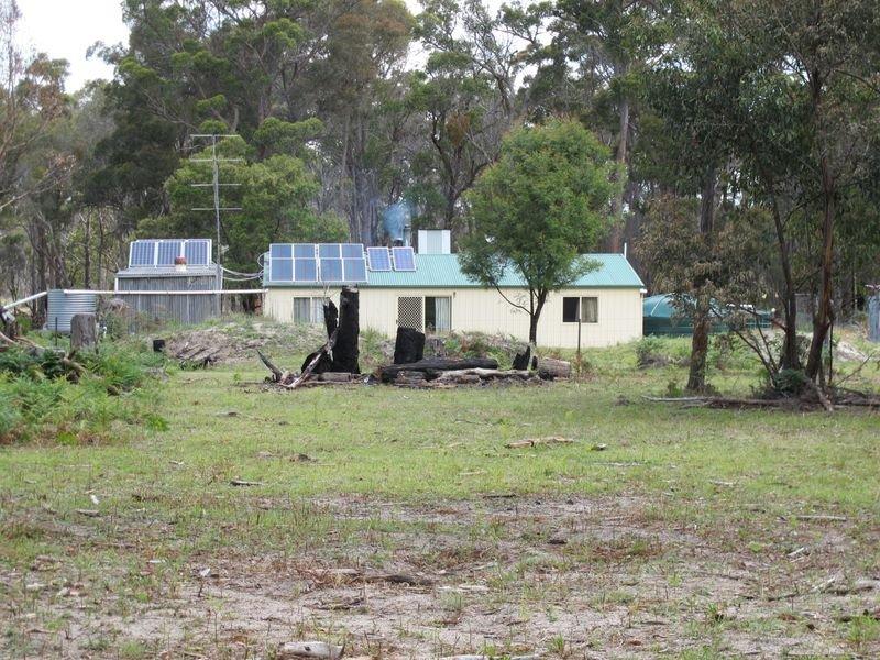538 Carrot Farm Road, Deepwater, NSW 2371