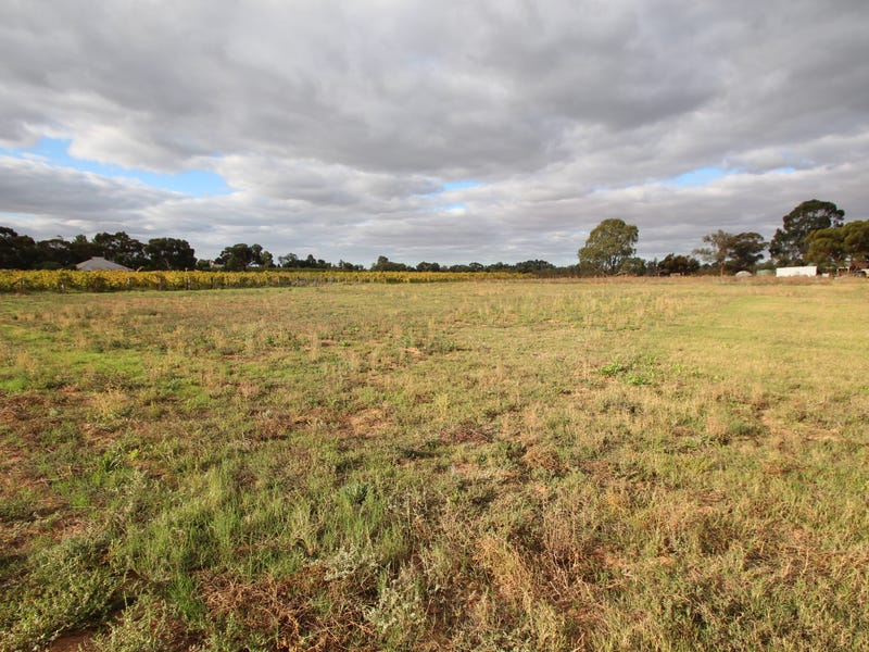 Lot 44 or 45 Arumpo Street, Renmark, SA 5341