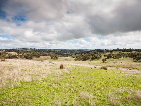 1181 Yalbraith Road, Taralga, NSW 2580