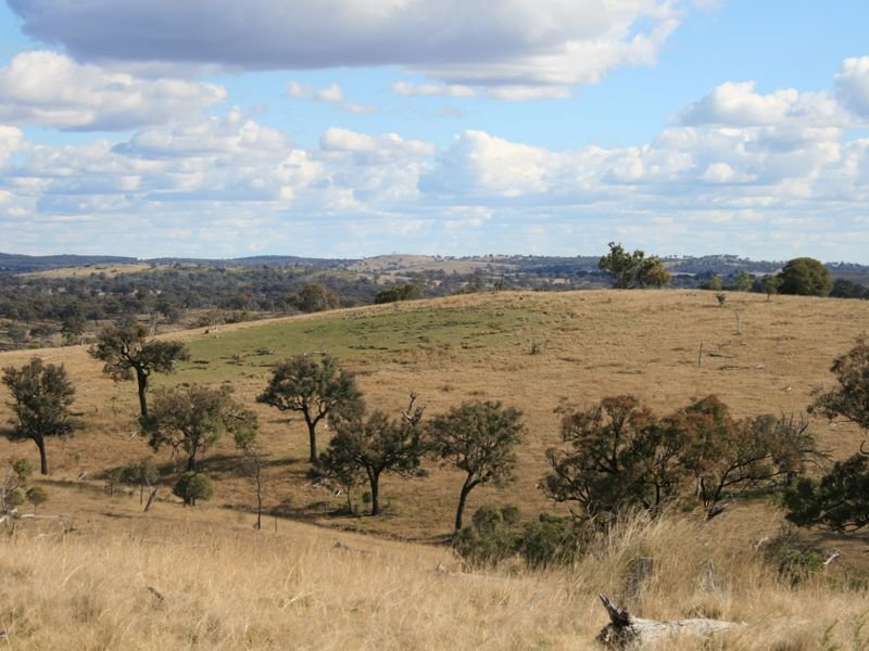 Lot 15 Springdale Road, Stanthorpe, Qld 4380