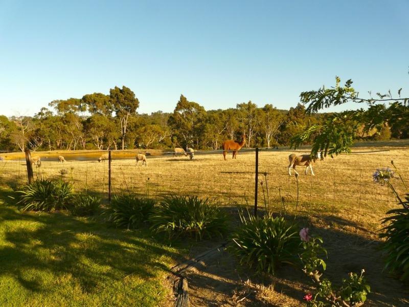 353A Dashwood Gully Road, Kangarilla, SA 5157