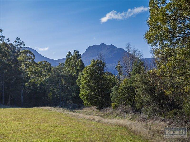 Lot 1, 47 Sawyers Creek Road, Mountain River, Tas 7109