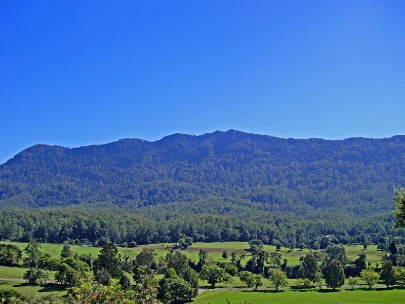 2209 Waterfall Way, Bellingen, NSW 2454