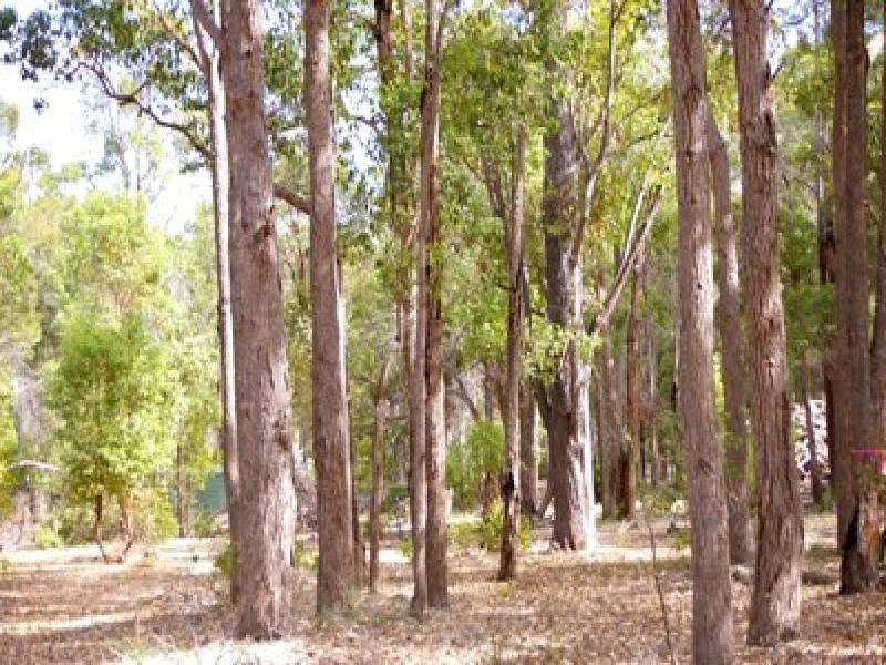 Lot 17 Cockatoo Drive, Nannup, WA 6275