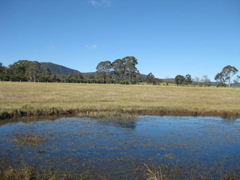 Level Lot  101 Wallis Creek Lane, Mulbring, NSW 2323
