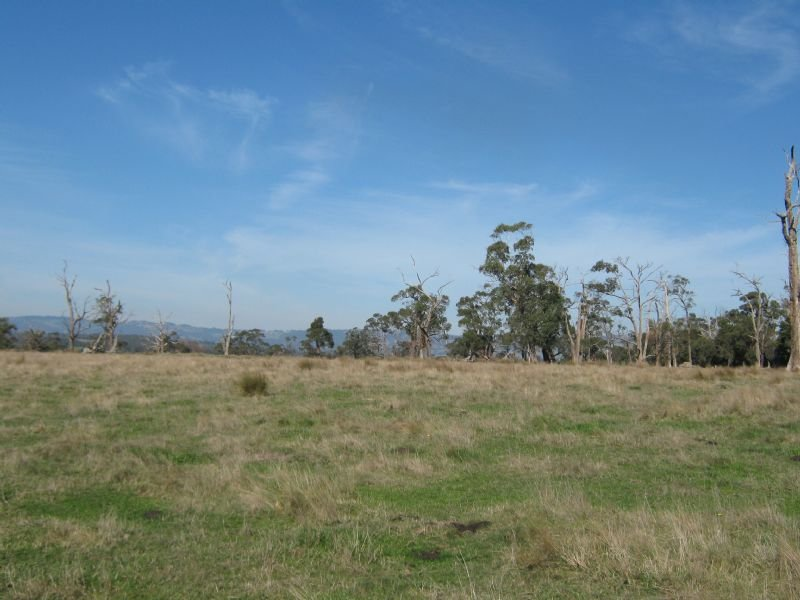 Lot 1 YARRAGON SHADY CREEK ROAD, Shady Creek, Vic 3821