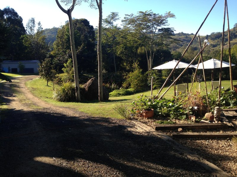 453 Tuntable Creek Road, The Channon, NSW 2480