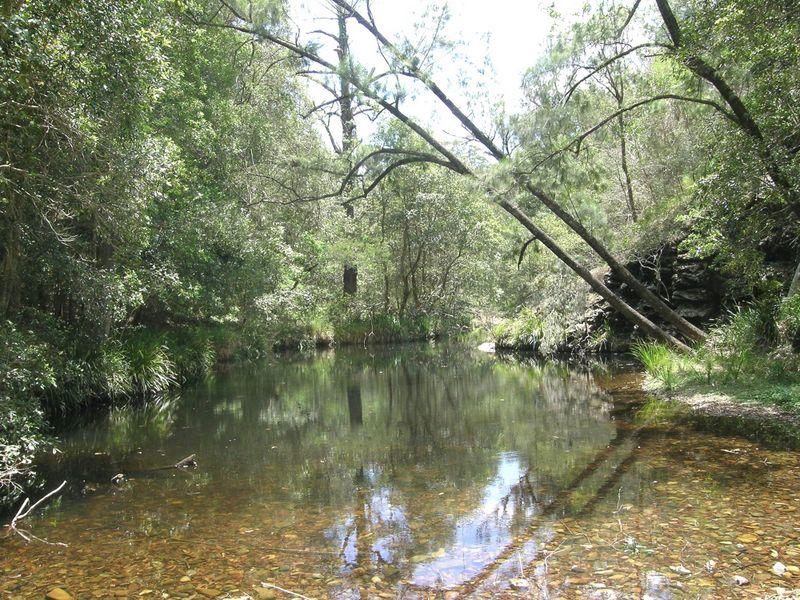 Lot 6, Dungay Creek Rd, Wittitrin, NSW 2440