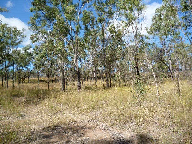 Address available on request, Didcot, Qld 4621
