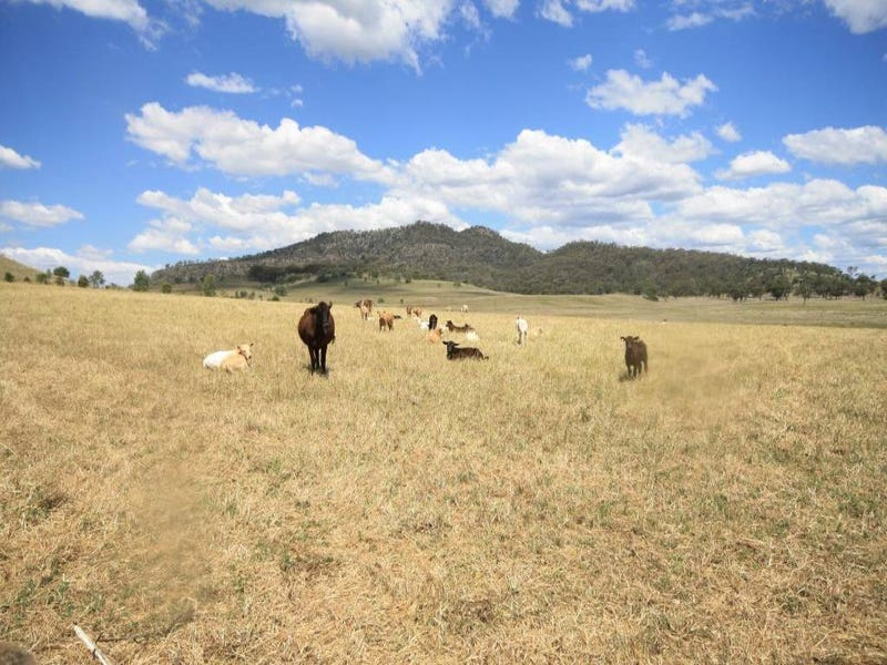 Lot 3 in an unregist Martindale Road, Denman, NSW 2328