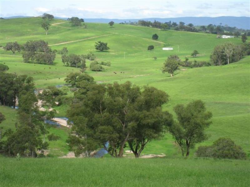 177 Walls Flat Road, Numbugga, NSW 2550