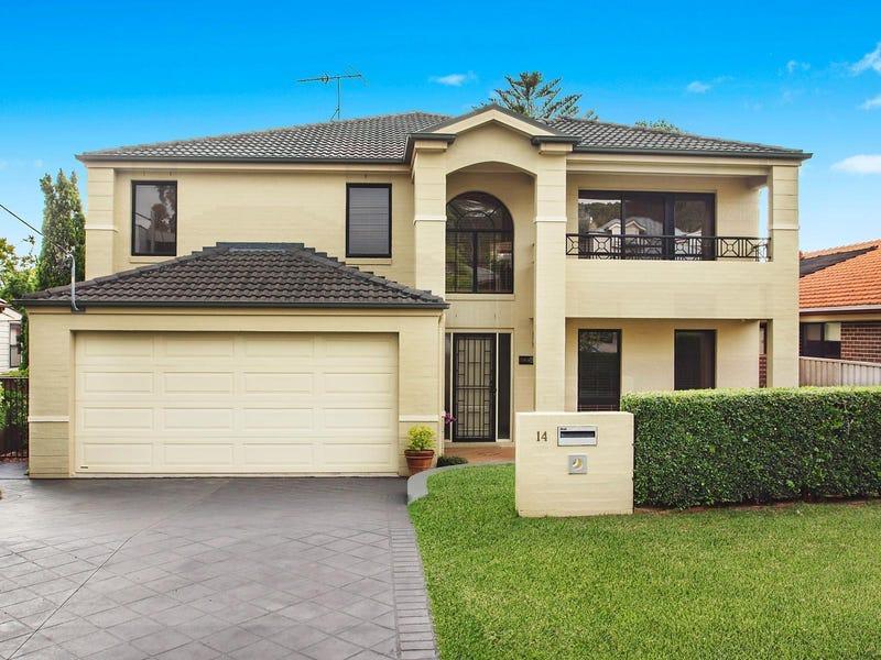 14 Ella Street, Adamstown, NSW 2289