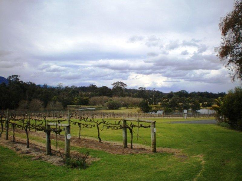 520 Illaroo Rd, Cambewarra, NSW 2540