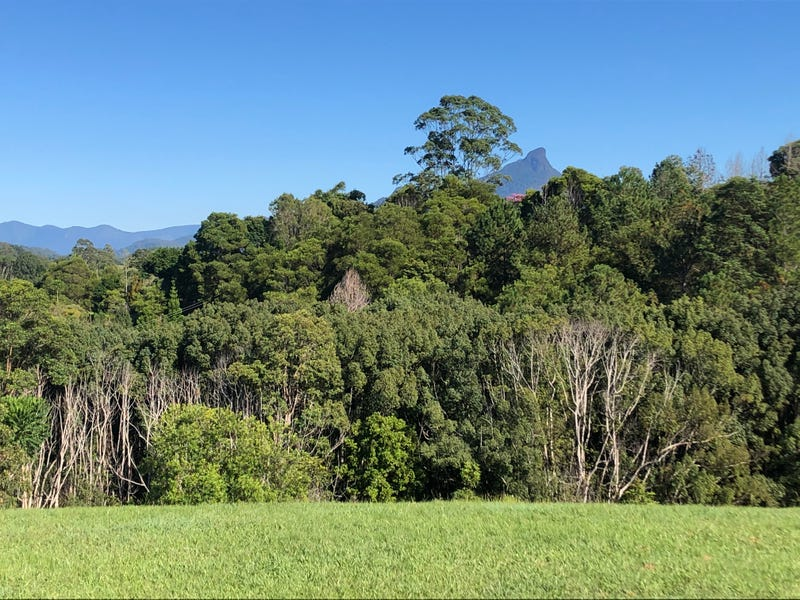 9 MINTO PLACE, Smiths Creek, NSW 2484