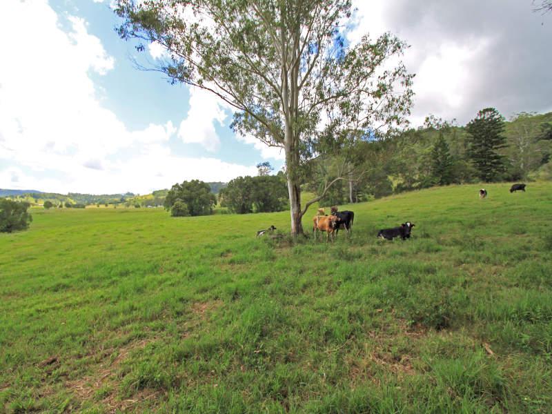 1336 Nimbin Road, Goolmangar, NSW 2480