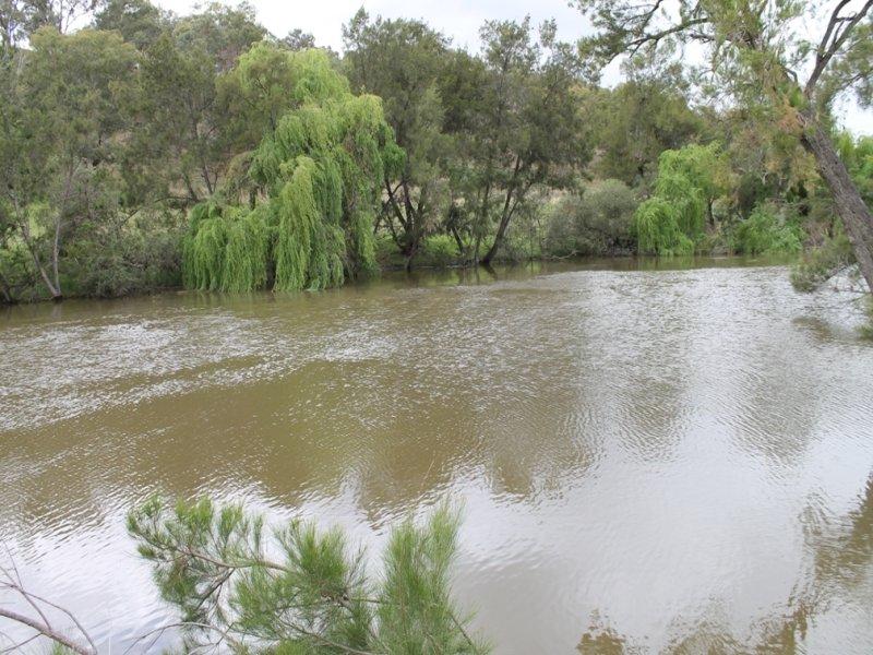 SABRINA Pindari Dam Road, Ashford, NSW 2361