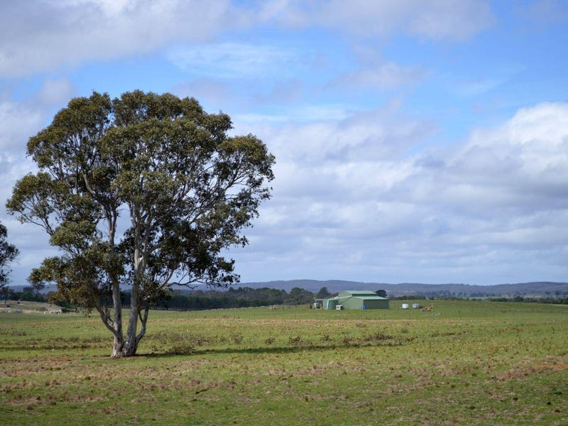 177 Golden Plains Drive, Quialigo, NSW 2580