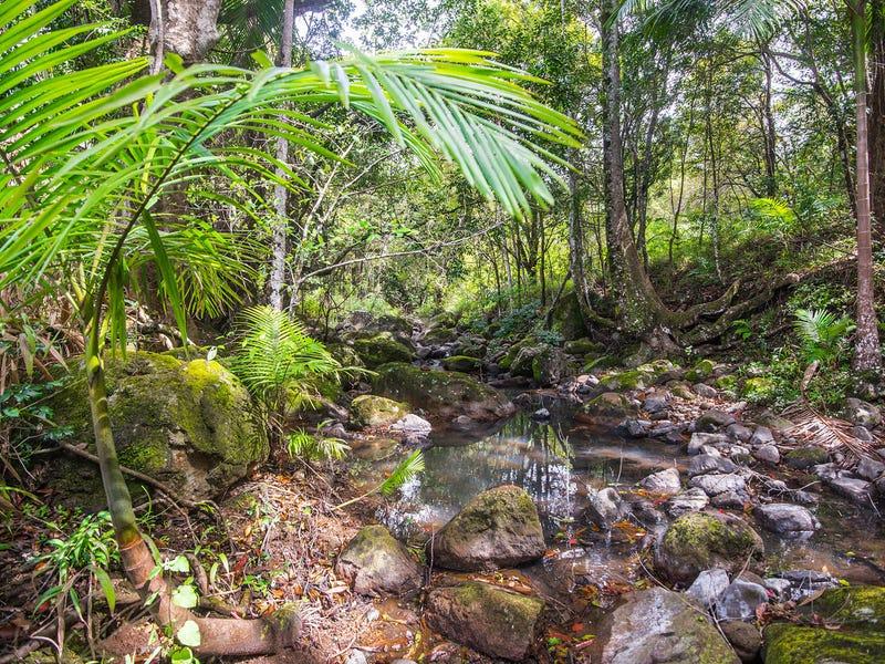 731 Left Bank Road, Mullumbimby Creek, NSW 2482