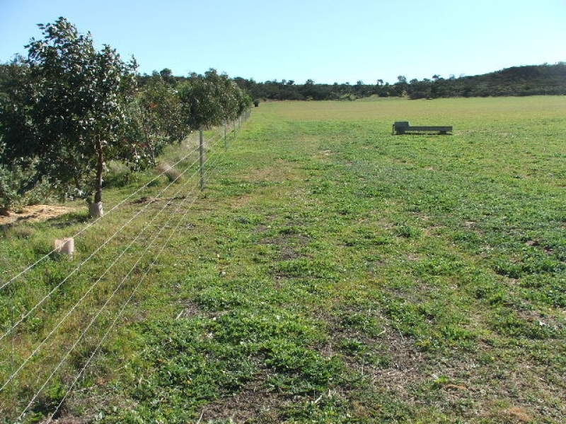 Lot 22, James Eastough Close, Nanson, WA 6532