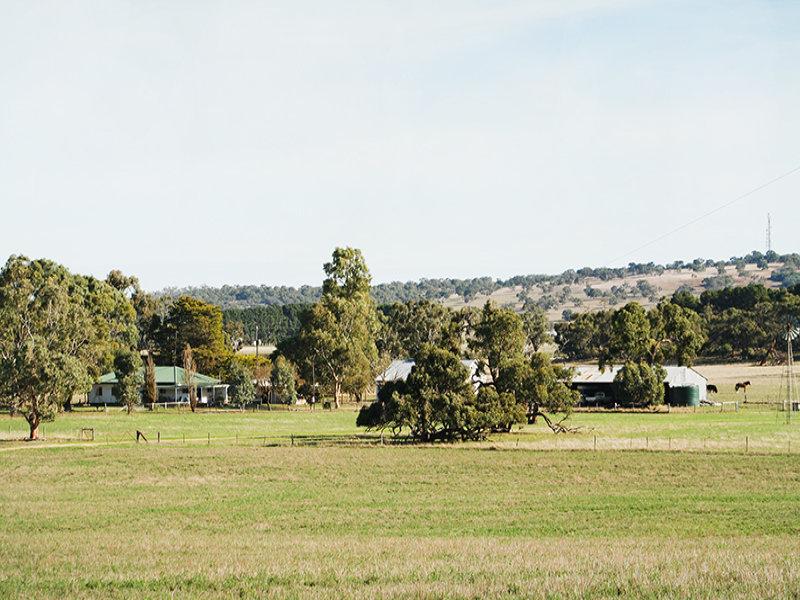4428 Naracoorte Road, Western Flat, SA 5268