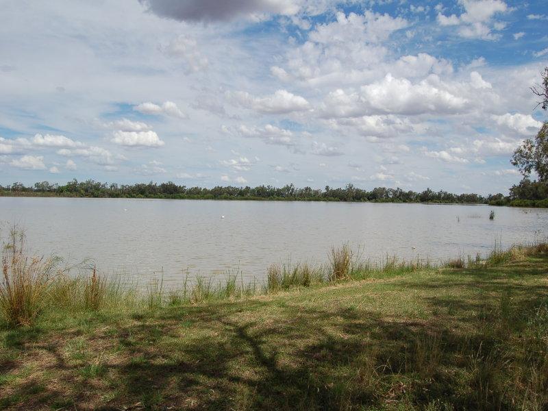 Lot 36, 36 Wells street, Lake Cargelligo, NSW 2672