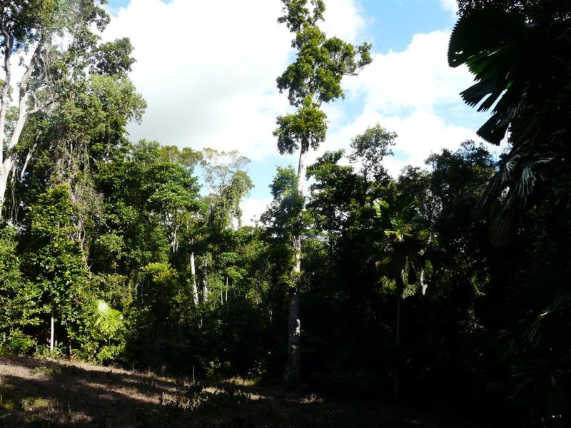 Lot 28 Waterfall Place, Jubilee Heights, Qld 4860