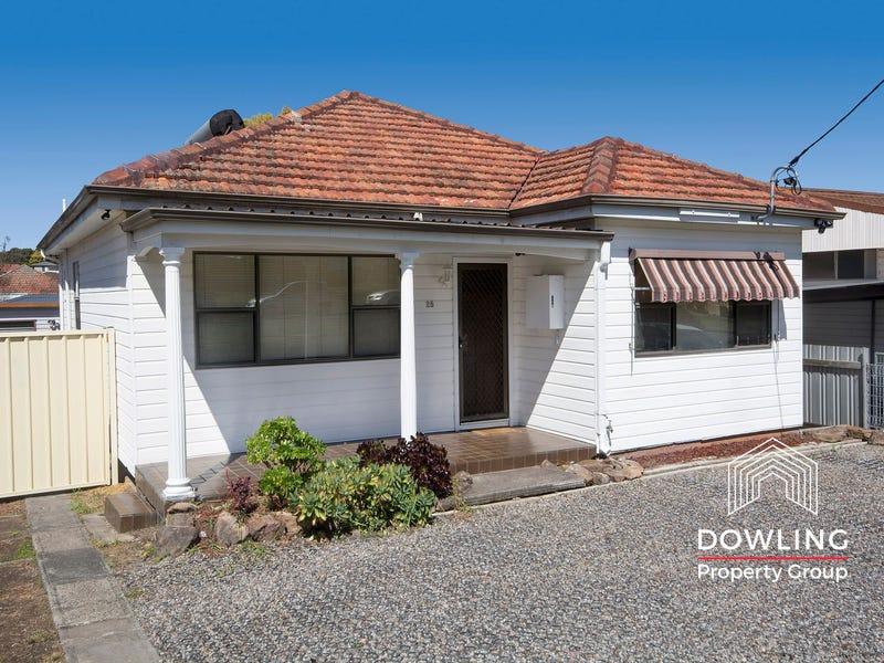 25 Fussell Street, Birmingham Gardens, NSW 2287