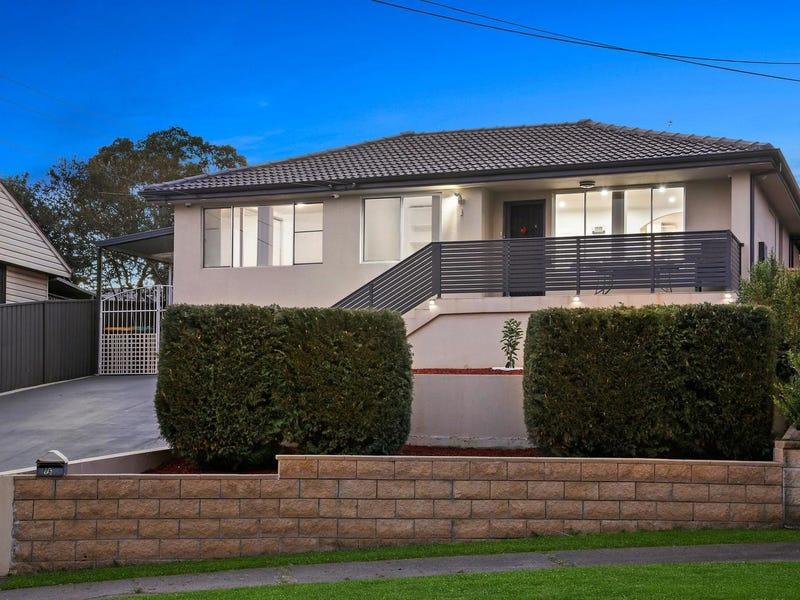 16 Winnall Place, Ashcroft, NSW 2168