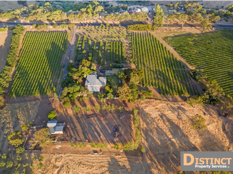 696 Gawler One Tree Hill Road BIBARINGA VIA, One Tree Hill