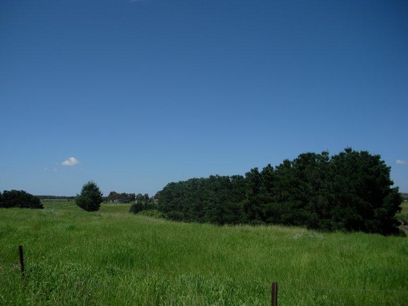 1336 Riddell Road, Riddells Creek, Vic 3431