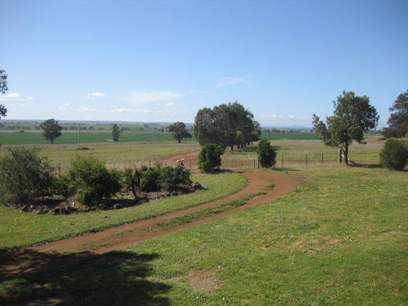 """""""WINBRI"""", Wongarbon, NSW 2831"""