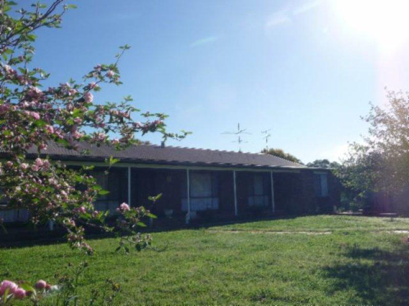 PALJAC CULCAIRN ROAD, Holbrook, NSW 2644