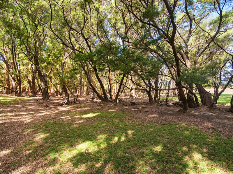 Lot 1629 East Calgardup Road, Witchcliffe, WA 6286