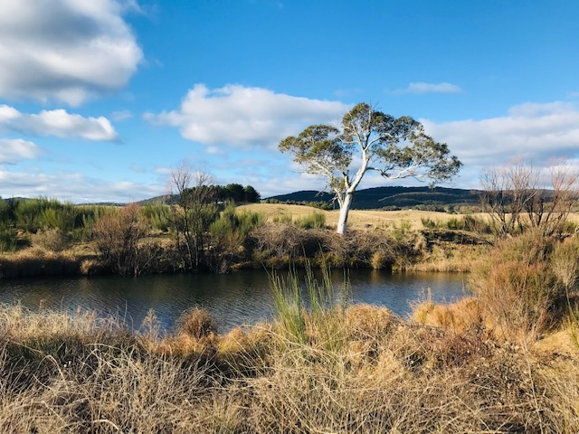 4687 Cooma Rd, Braidwood, NSW 2622