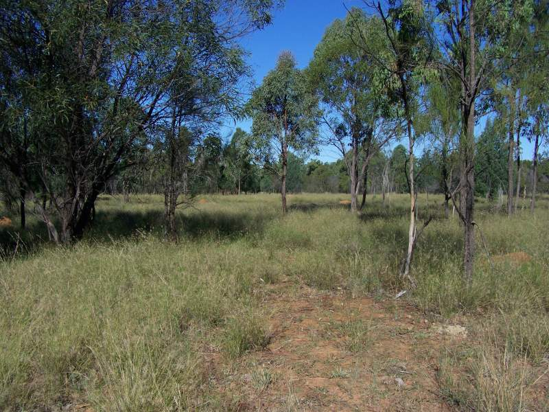 4 Theis Rd, Miles, Qld 4415