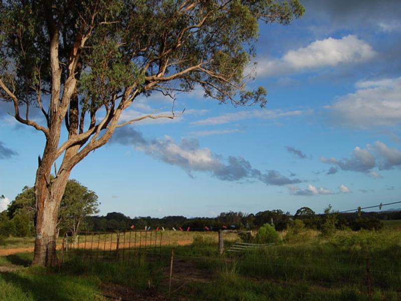 1862 Cookes Lane, Clybucca, NSW 2440