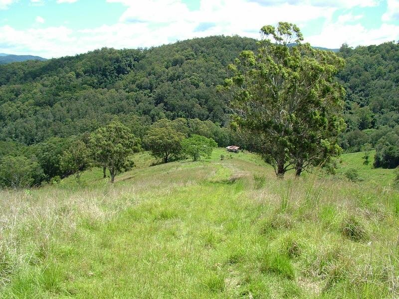 Lot 496 Callaghans Creek Road, Bundook, NSW 2422