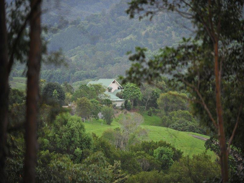 50 Birrigan Close, Nobbys Creek, NSW 2484