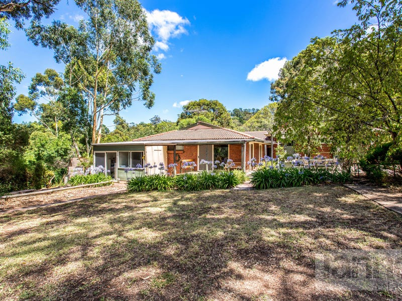 16 Shepherd Court, Coromandel Valley, SA 5051