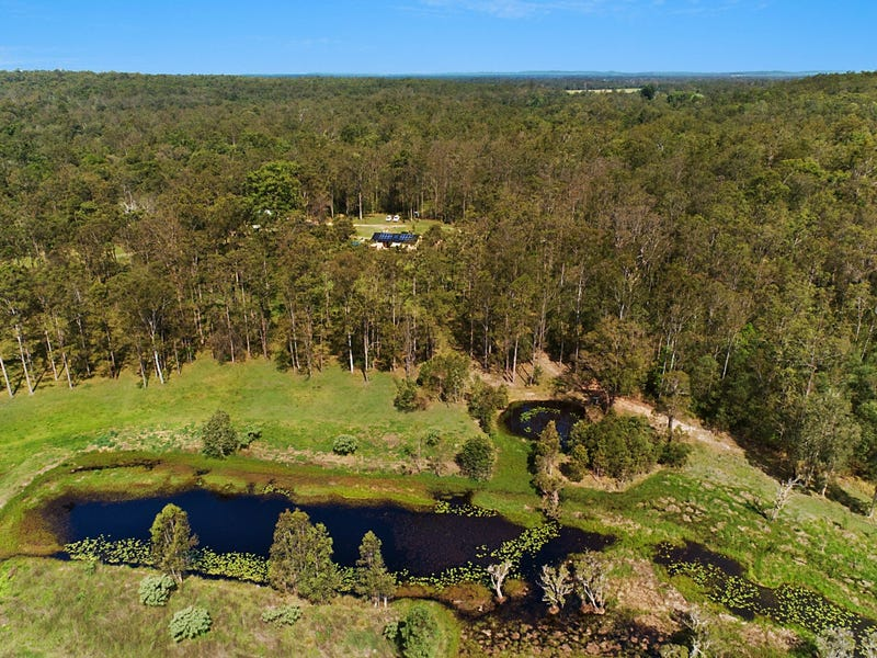 3223 Old Tenterfield Road, Mongogarie, NSW 2470