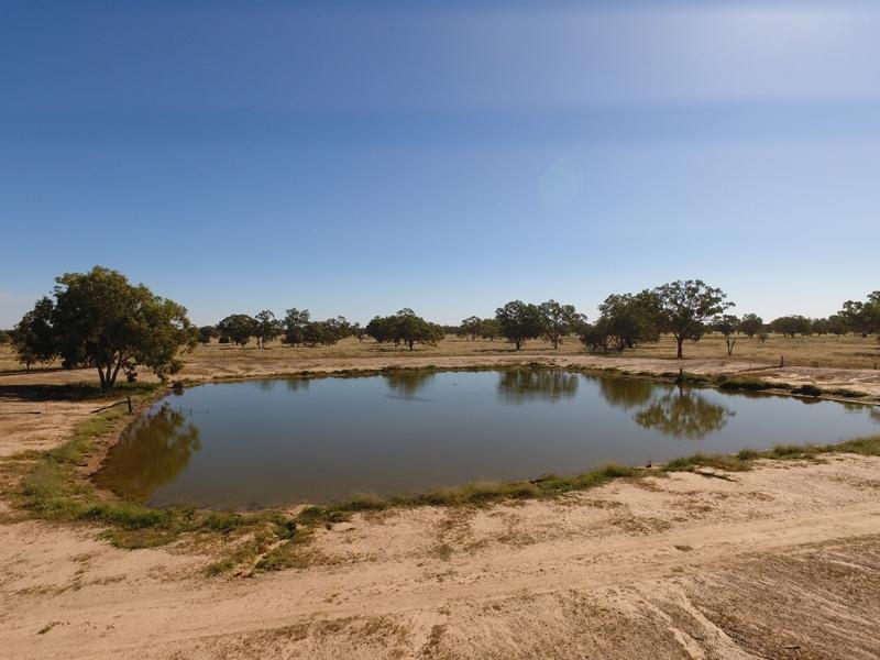 Greylands, Collarenebri, NSW 2833