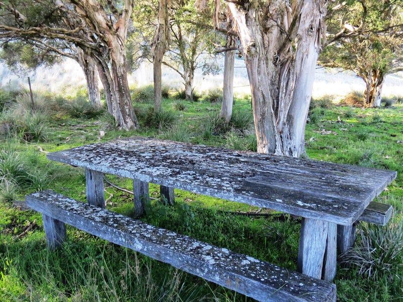 Pt Myrtlevale Upper Rouchel Rd, Aberdeen, NSW 2336