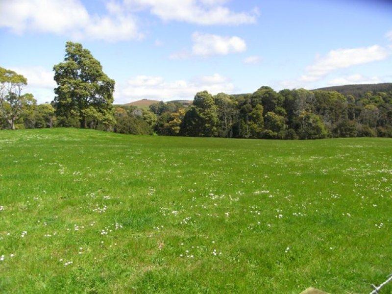 RA Applebys Road, Upper Natone, Tas 7321